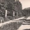 «Молодой парк», Барановичи