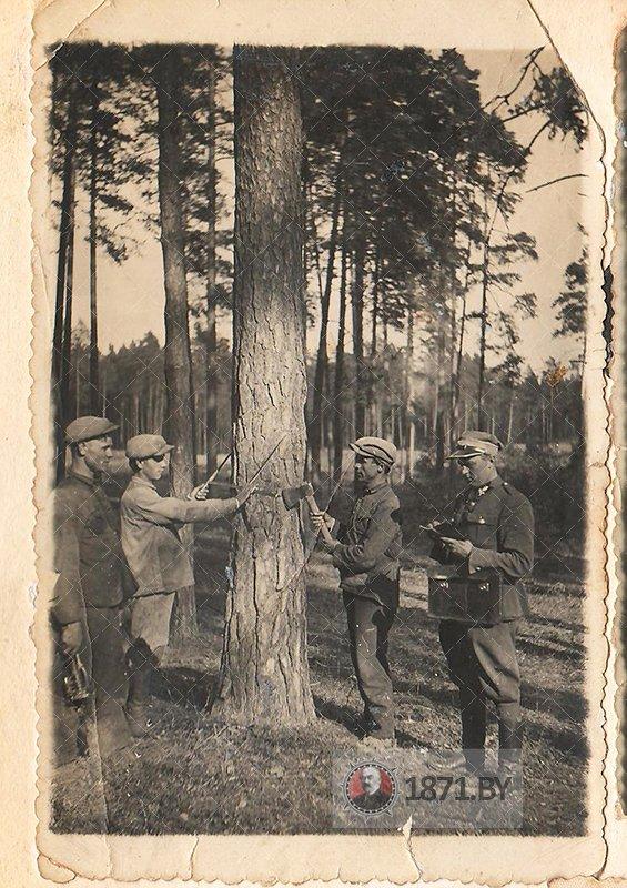 Работа лесчничего в Ястрембеле