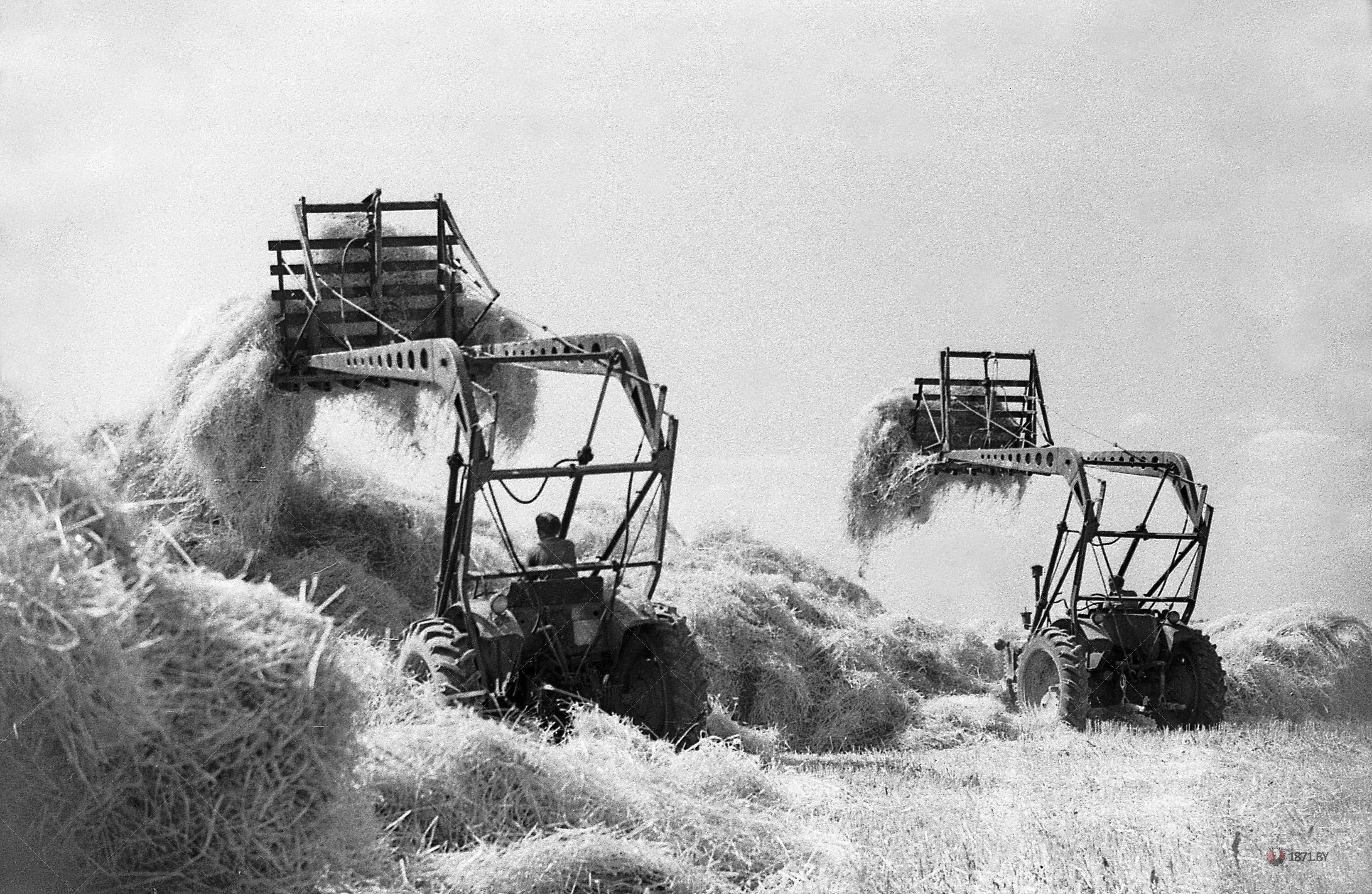 05. 1969 год.Стогометатели производят скирдование соломы.