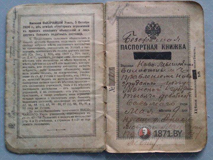 Паспорт, д. Анисимовичи